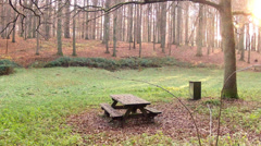 Picnic place in a forest. Stock Footage