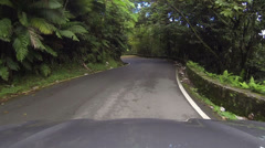 Driving POV El Yunque National Park Rainforest road HD 0245 Stock Footage