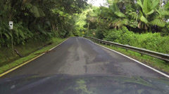 Driving through El Yunque National Park Rainforest POV HD 0240 Stock Footage