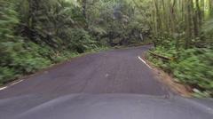 El Yunque Rainforest driving POV 2 HD 0242 Stock Footage