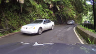 Stock Video Footage of El Yunque Rainforest driving POV fast timelapse HD 0242