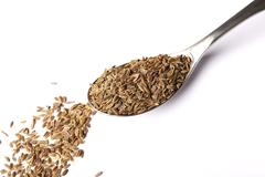 dill seed on spoon - stock photo