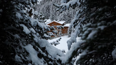Mountain chalet viewed from the forest Stock Footage