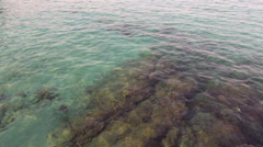 Emerald green ocean, calm sea water, rocks, waveform Stock Footage