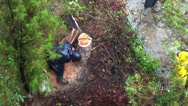 Stock Video Footage of Lumberjack cutting fallen tree after rain storm, bad weather, windy day