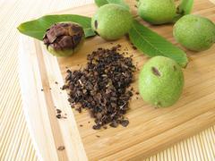 Green walnut outer shells, Cortex Juglandis Nucum - stock photo
