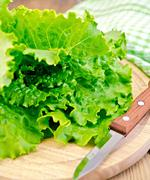 Lettuce green with a knife on board Stock Photos