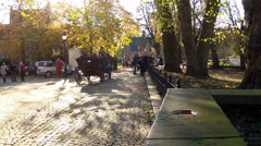 Horse-drawn carriage in the streets Bruges. Stock Footage