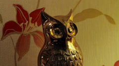 Pub decor of an owl from a country pub Stock Footage