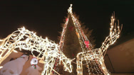 Stock Video Footage of Bright Deer Colorful Christmas Holiday Light Show