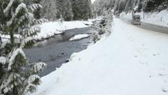 Winter Highway, Manning Park, BC Stock Footage
