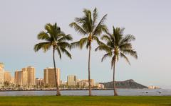 Panoraama Waikiki Honolulu Hawaii Kuvituskuvat