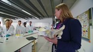 Stock Video Footage of Female teacher teaching group of university students in a science class