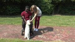 Attractive young man in a wheelchair with pretty young woman and a dog Stock Footage
