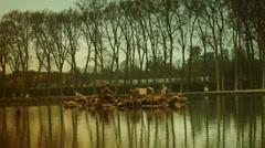 autumn in  Versailles garden, time lapse, 4k - stock footage