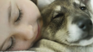 Stock Video Footage of cute girl falls asleep hugging dog, close up