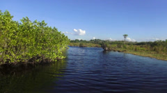 Fantastic Airboat ride in the Everglades Stock Footage