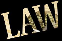 marijuana, medical and recreational marijuana industry in america - stock illustration
