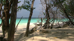 Maldives - bushy coast - stock footage