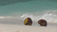 Stock Video Footage of Maldives - coconuts on the beach