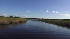 Breathtaking Airboat Ride in Floridas Everglades Stock Footage