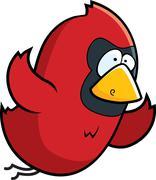 Cardinal Flying - stock illustration