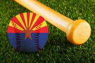 Stock Illustration of arizona baseball