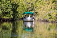 Stock Photo of NAPLES- JANUARY 19, 2014: A guided boat tour through the mangroves near Naples