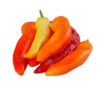 Group of yellow, orange and red peppers isolated against white Stock Photos