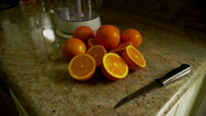 Oranges & Juicer on Counter Stock Footage