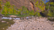 Stock Video Footage of Rapids in Zion National Park