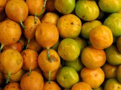 Passion fruit and mandarin background Stock Photos