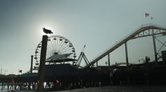 Santa Monica Pier with seagull - stock footage