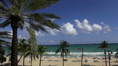 Palm trees at beautiful beach of Ft. Lauderdale - stock footage