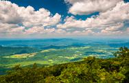 Stock Photo of view of the shenandoah valley from the appalachian trail in shenandoah nation