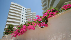 Stock Video Footage of Beautiful pink flowers adorn the area around the hotel