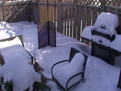 Back Yard the winter time. #23 Stock Footage