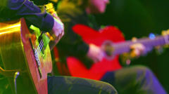 Closeup view Roman Miroshnichenko plays guitar with musician Stock Footage