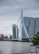 Erasmus bridge rotterdam, netherlands Stock Photos