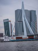 erasmus bridge rotterdam, netherlands against dark sky - stock photo