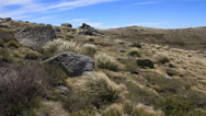 Stock Video Footage of Australian Landscape - Kosciuszko National Park