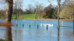 Playing field flooded by rising Thames Stock Footage