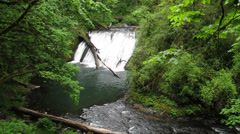 Lower North Falls, Silver Falls State Park, Oregon, 30s 720p Stock Footage