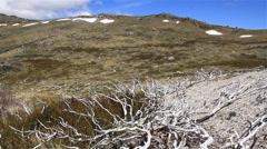 Australian Landscape - Kosciuszko National Park - stock footage