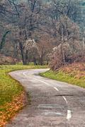 Winding road curves through autumn trees. Stock Photos