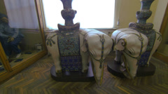 The elephant from the porcelain. Kunstkamera. Saint-Petersburg. Stock Footage