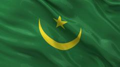 Flag of Mauritania - seamless loop Stock Footage