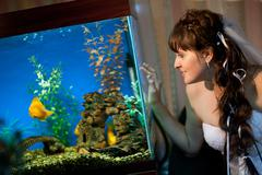 Bride watches fishes in aquarium Stock Photos