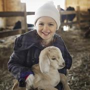 A child in the animal shed holding and stroking a baby goat. Stock Photos