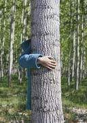 Ten year old girl standing behind commercially grown poplar tree on large tre Stock Photos